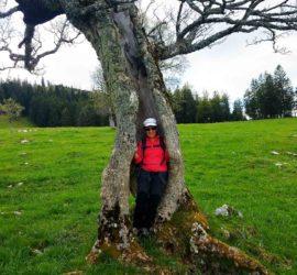 Canton de Neuchâtel Juin 2019. Auprès de mon arbre je .....