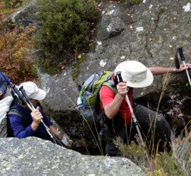 Sortie surprise 20 10 2019. Les marcheurs dans le massif du Donon. Photo : Yves Crozelon