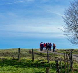Randonnée dans la vallée de la Largue. 09-02-2020 Photo : Yves Crozelon