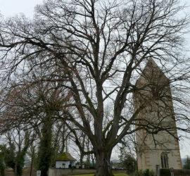 Sortie Dietwiller 19-01-2020. Tour-Choeur de l'ancienne église de Dietwiller de 1493. Photo : Danielle Natter.