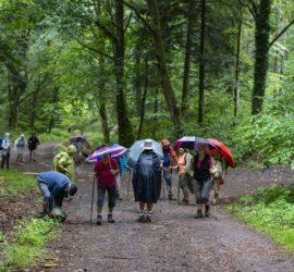 Le Tour du vallon Kaltenbach. 15-07-2020. Photo: Yves Crozelon