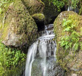 Randonnée dans la vallée de Munster par la vallée de la Wormsa. Cascade. Photo: Yves Crozelon