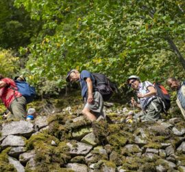 Randonnée dans la vallée de Munster par la vallée de la Wormsa. Photo: Yves Crozelon