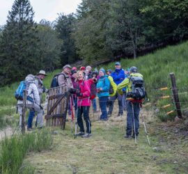 Randonnée au ballon d'Alsace pour rejoindre le sommet du Wissgrut. 04-10-2020. Photo: Yves Crozelon