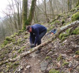 Matinée de travail sur le sentier de la cascade du Siehlbaechle à Wattwiller. Fév.2021