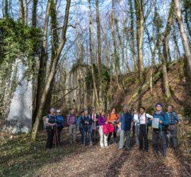 La couronne forestière du Talrain à Wittersdorf. Fours à chaux Fév.2021. Photo: Yves Crozelon