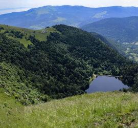 Saegmatt-Hohneck. 27-06-2021. Lac du Schiessrothried. Photo: Yves Crozelon