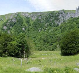 Saegmatt-Hohneck. 27-06-2021. Photo: Yves Crozelon