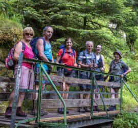 Saegmatt-Hohneck. 27-06-2021 Sentier des cascades. Photo: Yves Crozelon