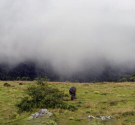 Une super journée de randonnée du Lachtelweiher à la source de la Doller... Photo: Yves Crozelon